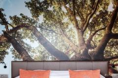 Hotel_Auberge-de-la-ferme_Belgium_(2018)_0025_LR
